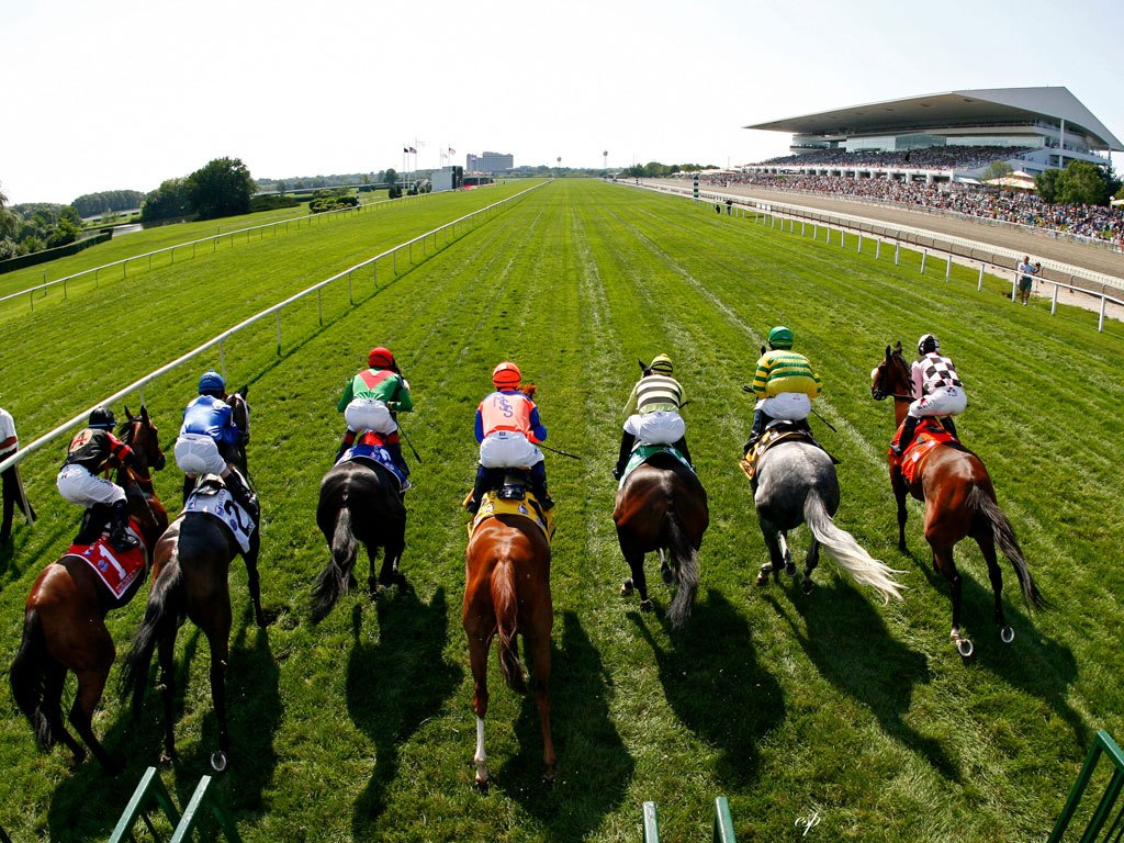ArlingtonTurf_Horse_Racing_Wallpaper